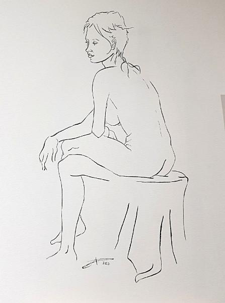 Encre de chine - Nu féminin #3 (Encre de David-Eugène Desmet - D.E.D.)